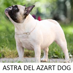 ASTRA_Z
